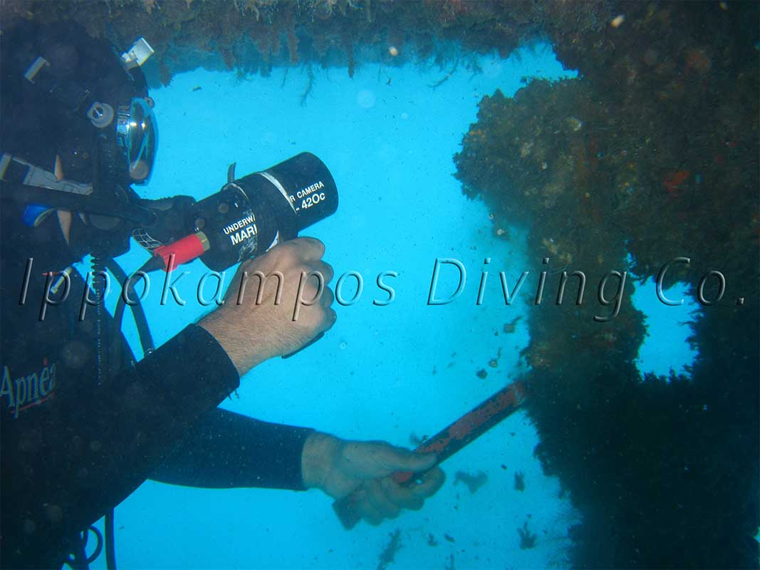 Ippokampos Diving CO Diving and Underwater Services